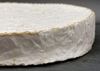 queijo brie vs camembert