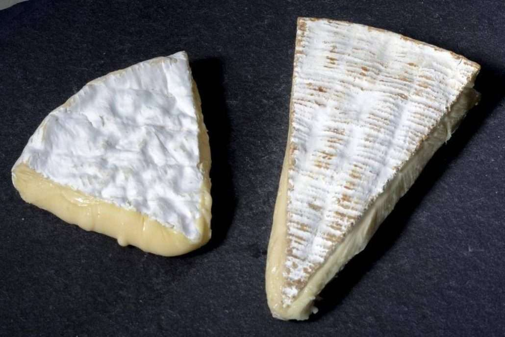 queijo camembert e brie
