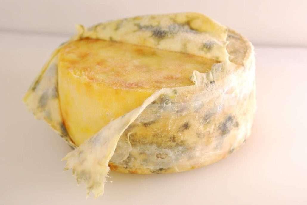 Tecido de cheddar