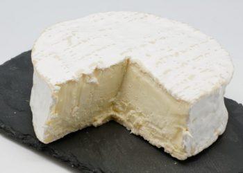 queijo brillat-savarin