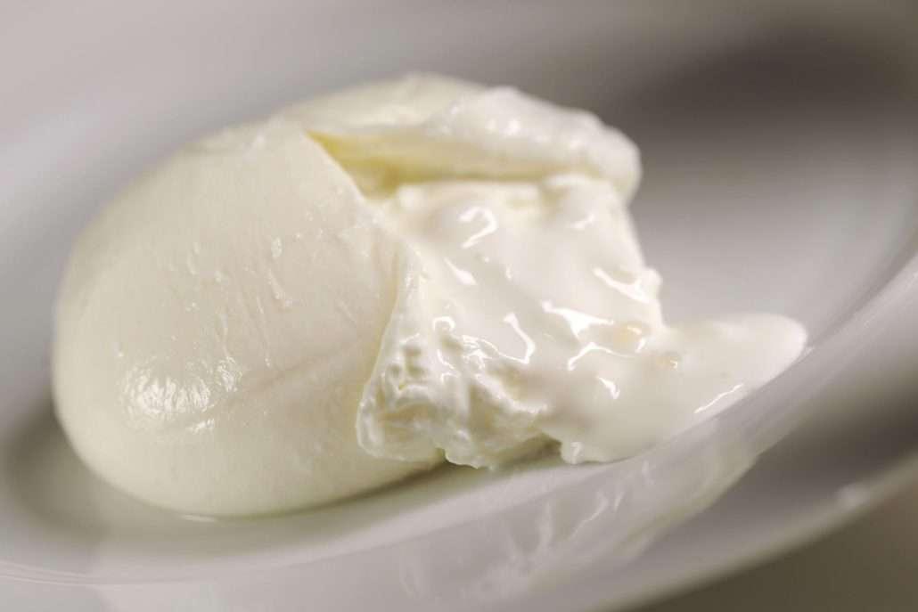 queijo burrata