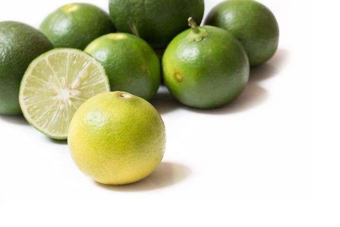 tipo de limão:  Limão-galego