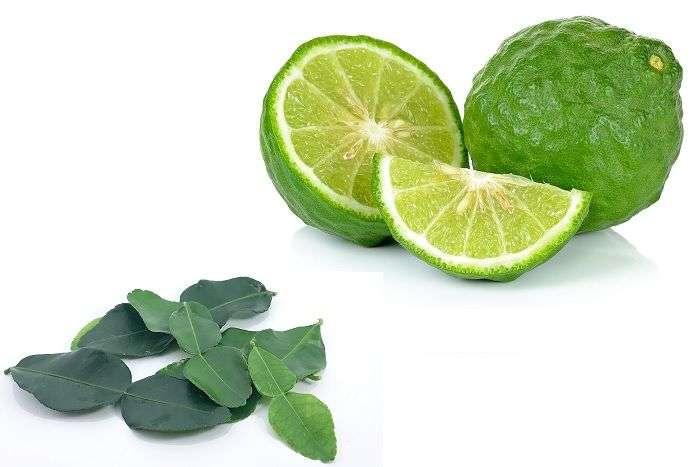 tipo de limão: Lima-kaffir ou Cobawa