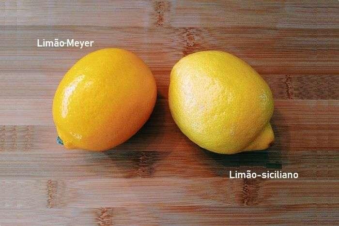 Diferença entre o limão-Meyer e o limão-siciliano