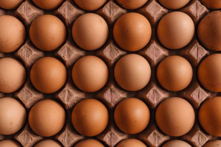 quantas calorias tem um ovo