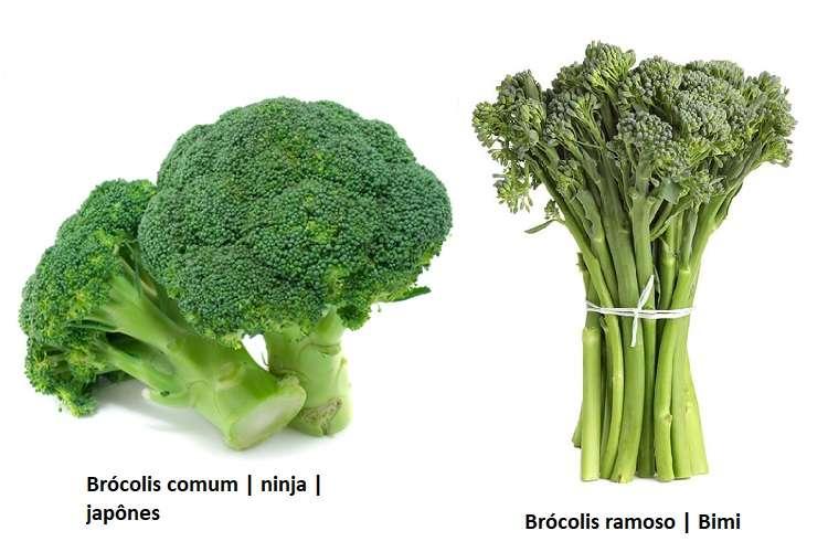 brócolis ninja e ramoso