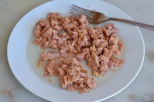 corte a posta de atum em pedacinhos