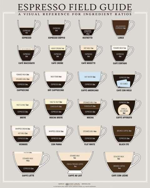 Guia do café